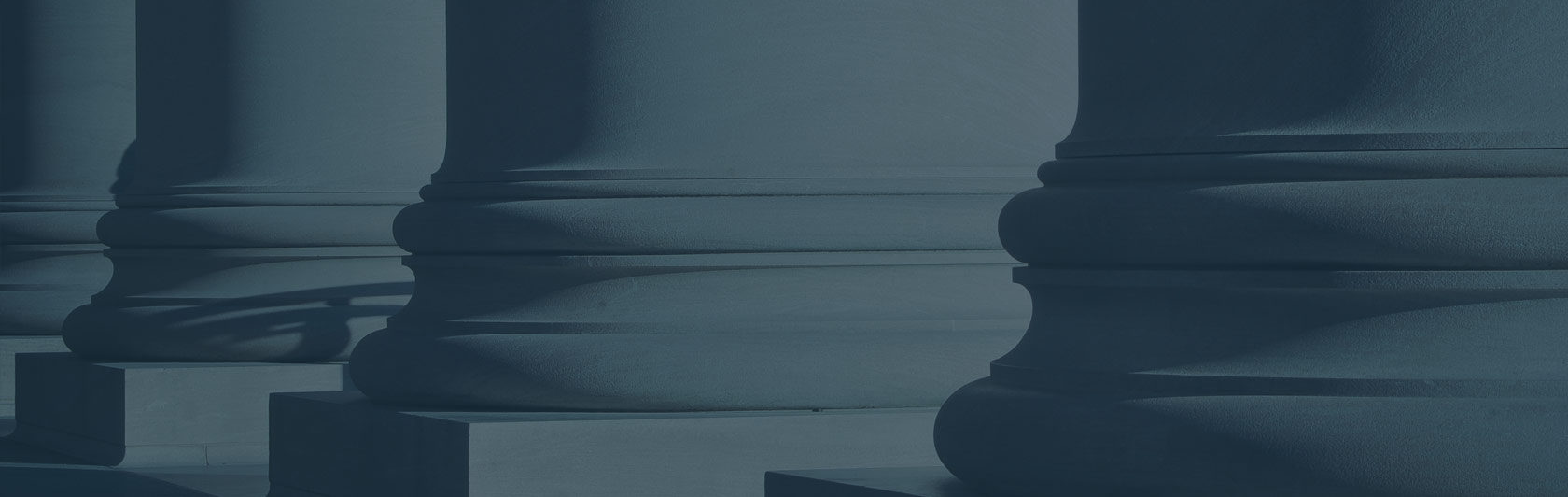 Litigation & Expert Witness